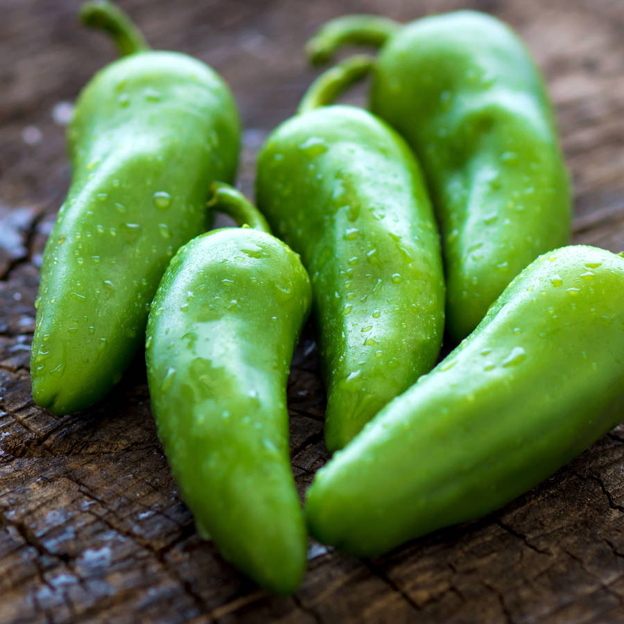 jalapeno-chilli-mild-finishing-salt