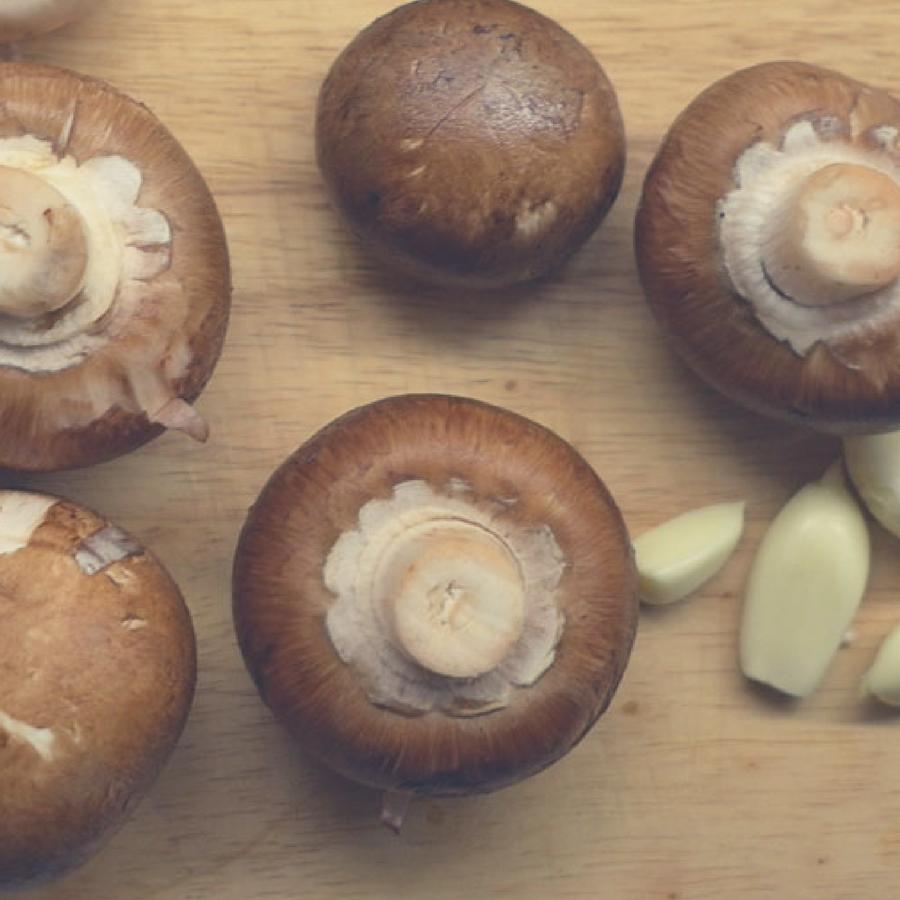 swiss-brown-mushroom-salt-gourmet-tasmanian